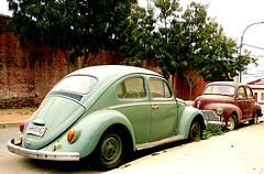 Escarabajo verde, clásicos de los coches